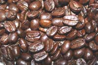Costa Rican Tarrazu Coffee - 5LB